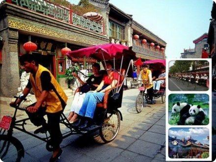 Beijing Zoo & Lama Temple & Hutong Tour