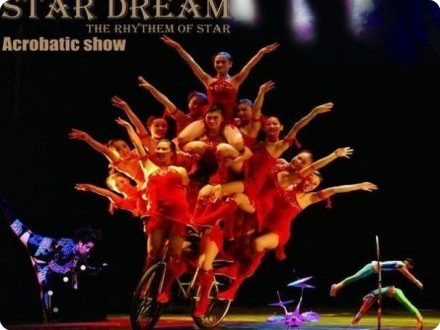 Chinese Acrobatics Night Show - Chaoyang Theatre