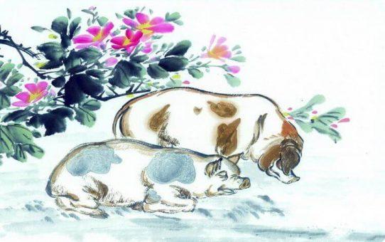 Chinese zodiac – pig